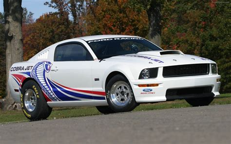 ford cobra jet 2008 ford cobra jet mustang widescreen car pictures