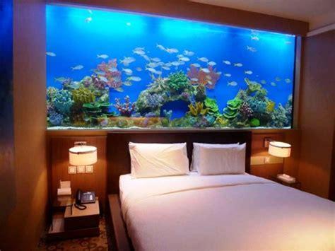die besten  aquarium fische kaufen ideen auf pinterest