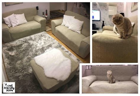 best sofa for cat owners stains and fur on leather sofas cat friendly sofa