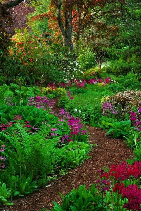 wonderful woodland garden design ideas awesome