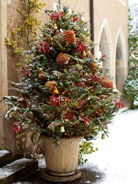 outdoor tree outdoor christmas decorations pinterest