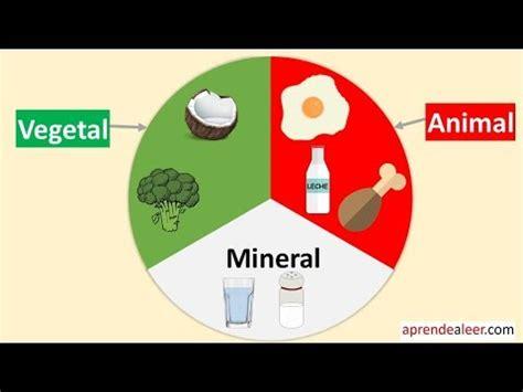 origen de los alimentos mineral alimentos de origen animal vegetal y mineral para ni 241 os