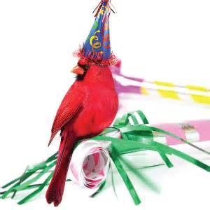 happy 15th birthday cardinal bank