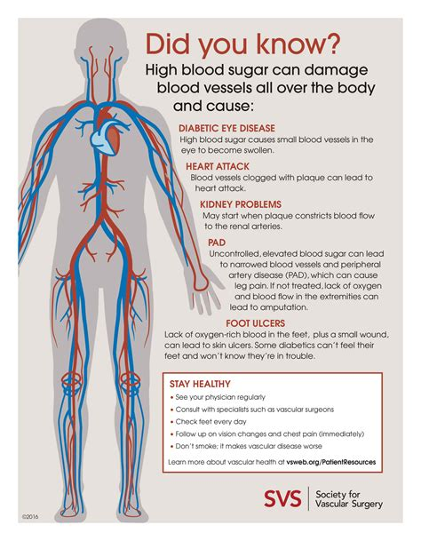 What Can Cause You To Blood In Your Stool by Six Diabetes Related Vascular Complications And How To