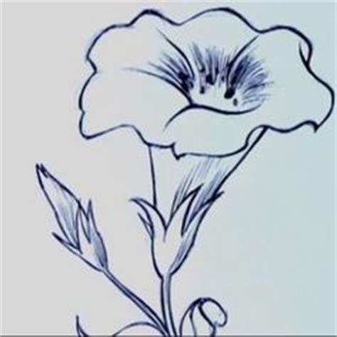 fiori disegni a matita risultati immagini per fiori disegni a matita pirografo