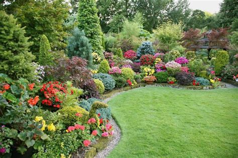 shrubs for flower beds a flower bed with conifers grasses and shrubs in