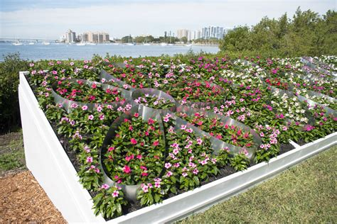 Top 10 Botanical Gardens Selby Makes List Of Top 10 Botanical Gardens In U S Sarasota Your Observer