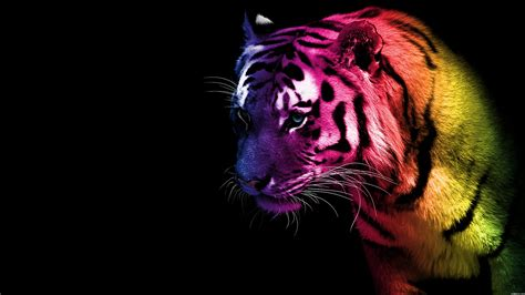 imagenes cool animals cool animal abstract animals
