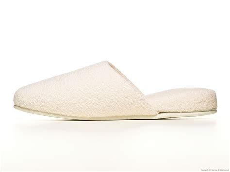 Japanese House Slippers Images