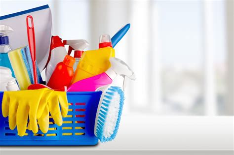 find house cleaning services experts and professionals