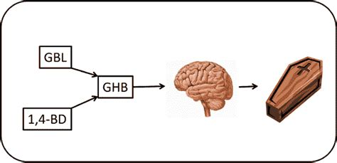 Ghb Detox Protocol ghb pharmacology and toxicology acute intoxication concent