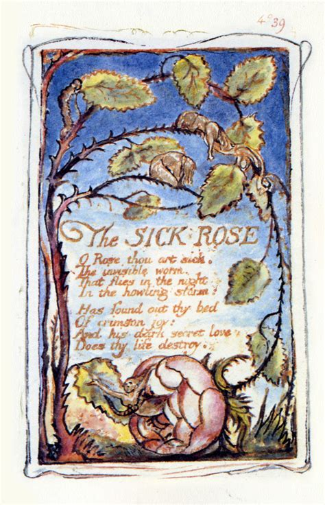 theme sick rose william blake the sick rose o rose thou art sick the by william blake
