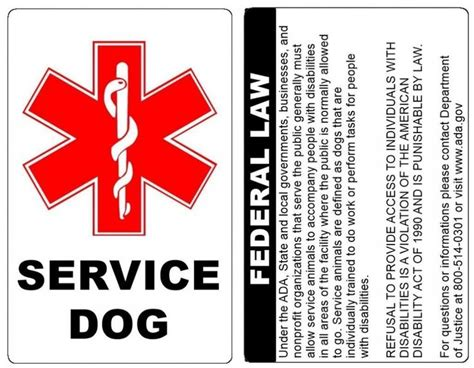 ada service best 25 ada service ideas on service dogs emotional support animal