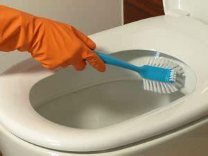 Sponge Pembersih Sudut Sudut Gelas wc bersih hindari penyakit sedot wc medan