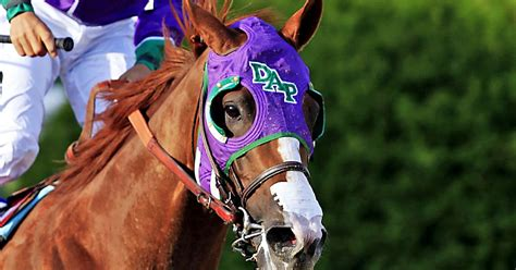 expect  california chrome tackles  belmont fox sports