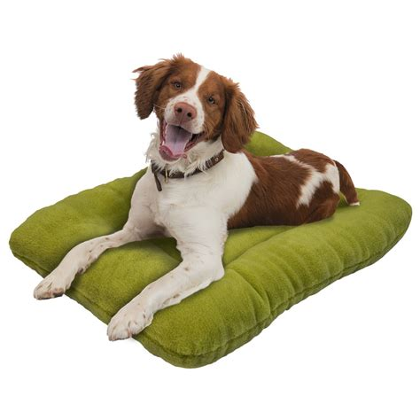 west paw dog beds west paw design eco nap dog bed 32x22 157aw save 56