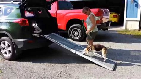 best suv for dogs suv bolster pet bed 2017 2018 2019 ford price release