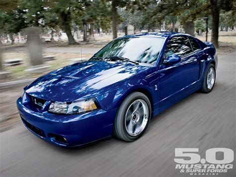 2003 ford mustang cobra 2003 ford mustang cobra terminator photo image gallery
