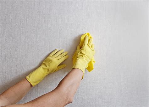 wall cleaner cleaning the walls at your home anyclean