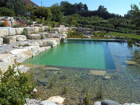 natural swimming pool natural swimming ponds pools aquatic consultant