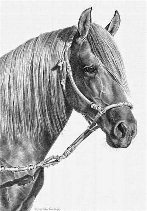 imagenes a lapiz de caballos cuadros pinturas oleos dibujos a l 225 piz de caballos con