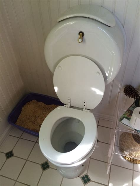 Toilet Bowl Plumbing Free Photo Toilet Wc Bathroom Plumbing Free Image On