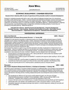 executive director resume examples sample resume of executive director how to write a executive resume samples professional resume samples