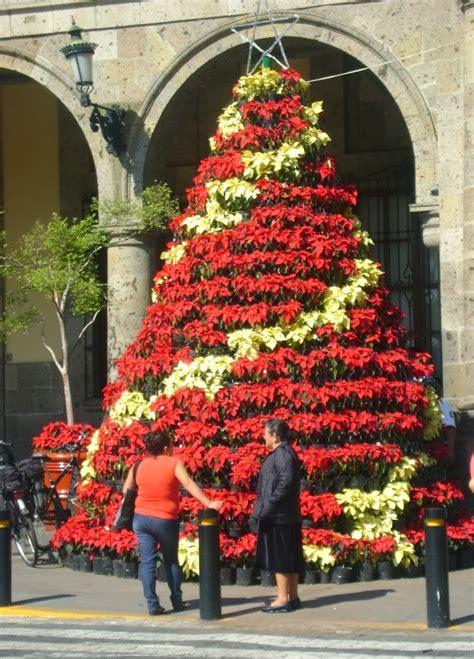 tradicion arbol de navidad m 233 xico a trav 233 s de la mirada de una cubana tradici 243 n