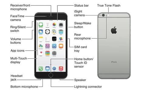 layout for iphone 6 apple iphone 6 plus diagram at t device support