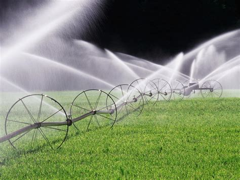 how to conduct an irrigation audit hgtv