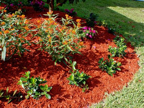 Landscape Ideas Mulch Creating A Professional Backyard Landscape Landscaping