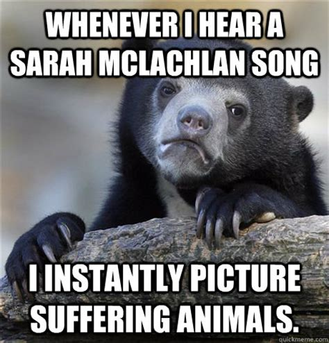 Aspca Meme - whenever i hear a sarah mclachlan song i instantly picture