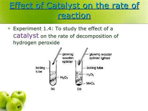 design experiment rate of reaction 1 4 rate of reaction 1 2d biology