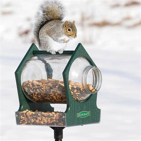 duncraft com eco squirrel jar post feeder