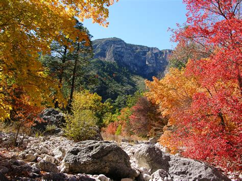 colors in fall colors report guadalupe mountains national park u