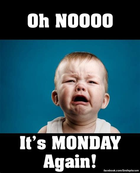Oh Nooo Meme - oh nooo its monday again pictures photos and images for