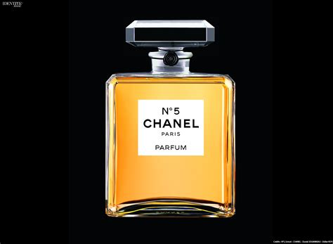 Parfum Chanel exhibition n 176 5 culture chanel identit 233 book