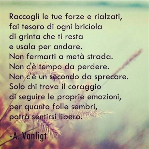 sono pazzo di te testo 57 best images about la vita 232 poesia on un