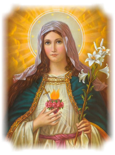 forgiving a marian novena of healing and peace books feast of the immaculate of 187 luisa piccarreta