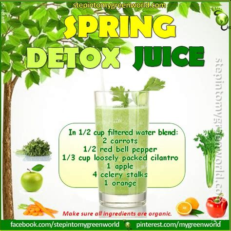 High Fiber Detox Juice Recipe by 292 Best Images About Juicing Recipes And Tips For