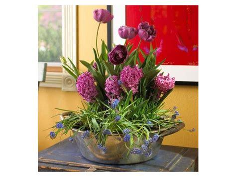 Plantes D Interieur Decoration by 42 Id 233 Es Deco Pour Des Plantes D Int 233 Rieur