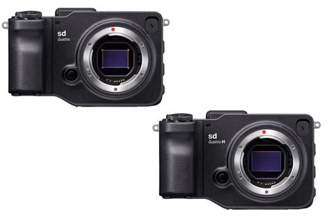 Sigma Sd Quattro sigma announces two new sd quattro interchangeable lens