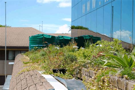 Mba Durban by Greenroofs Projects Master Builders Association