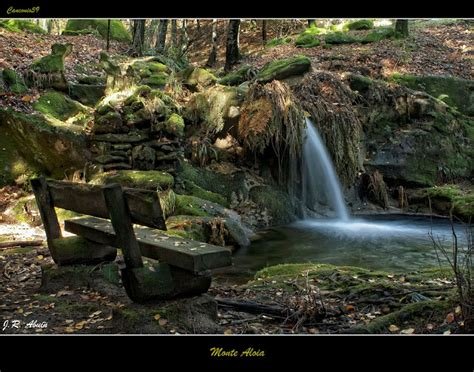 monte aloia nature park wallpaper monte homeactive us monte aloia spain wallpaper related keywords monte aloia
