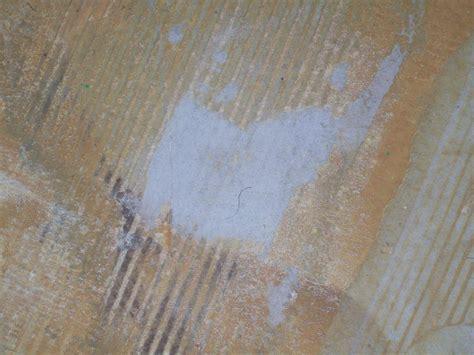Laminate Flooring: Do I Need Laminate Flooring Underlayment