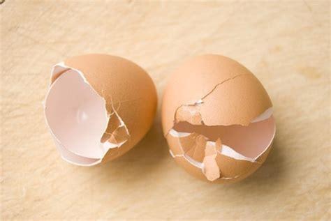 casa di vita despar i gusci delle uova casa di vita