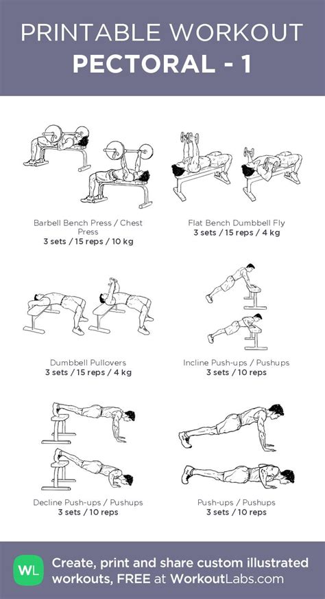 best 25 pectoral exercises ideas on biceps
