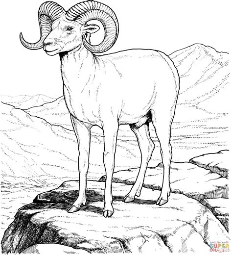 mountain sheep coloring page perfect coloring pages mountains image collection ways