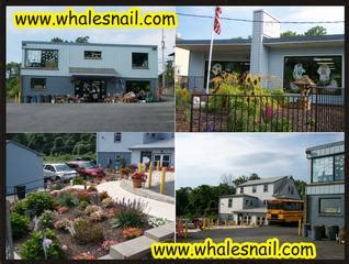 whales snails and puppy tails whales snails puppy tails etters pa 17319 717 938 9978