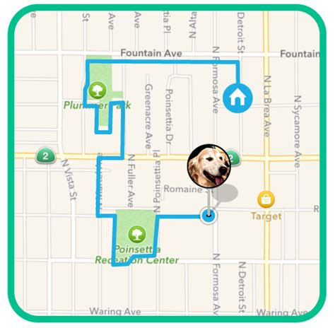 wag walking price wag the uber of walking technology and operations management